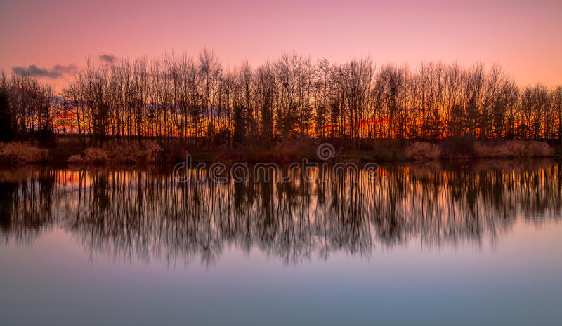 Trees reflecting in lake at sunset. Silhouette trees reflecting in lake at sunset stock image