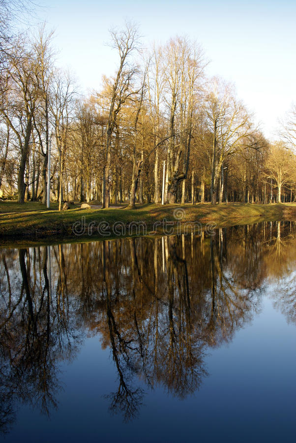 Download Trees reflecting on water stock photo. Image of river - 12609278