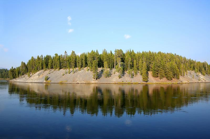 Trees reflecting in Yellowstone Lake royalty free stock photography