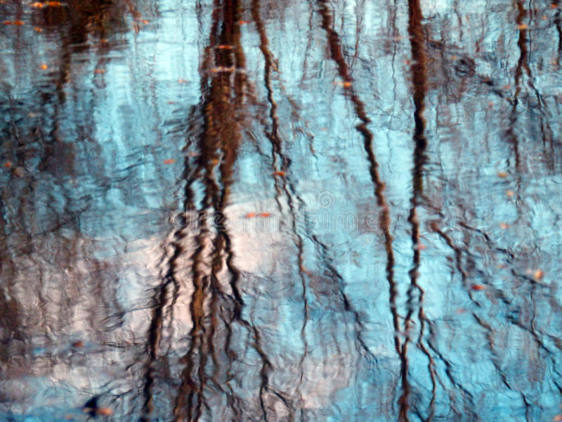 Trees reflection on water royalty free stock photos