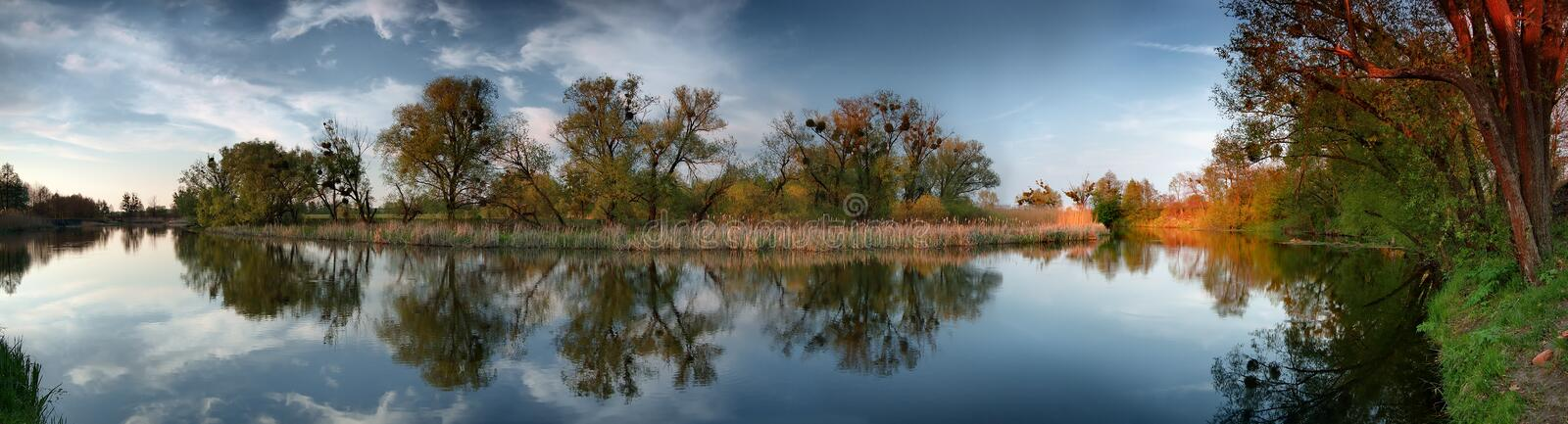 Trees on river royalty free stock photo