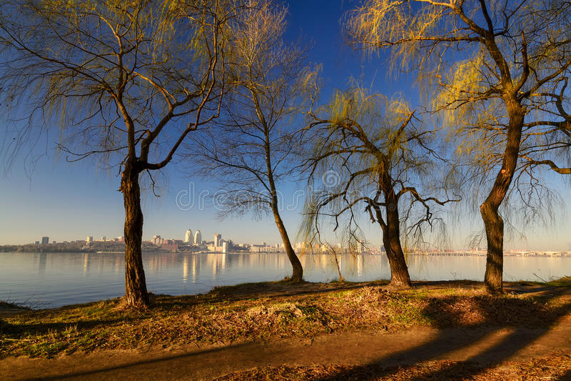 Trees on the river bank. In the morning sun. Dnepropetrovsk, Ukraine royalty free stock image