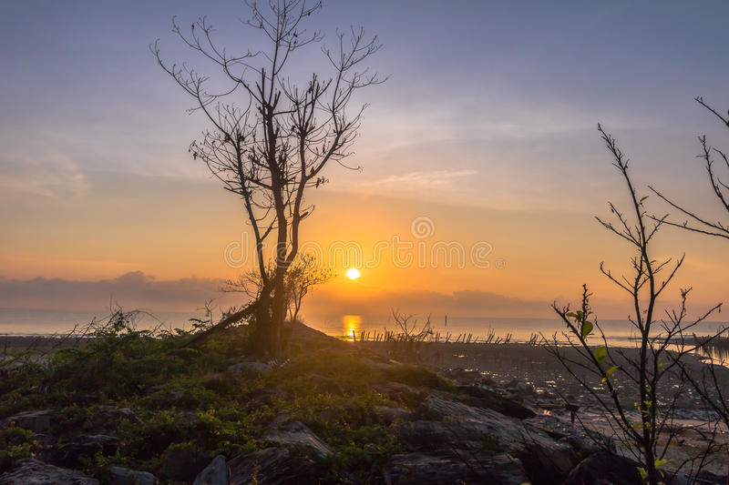 Trees on the rock near the dock. Smoke from burning forest from Indonesia. make the light of the sun can fade the sun is red round before sunset.The smoke made stock photography