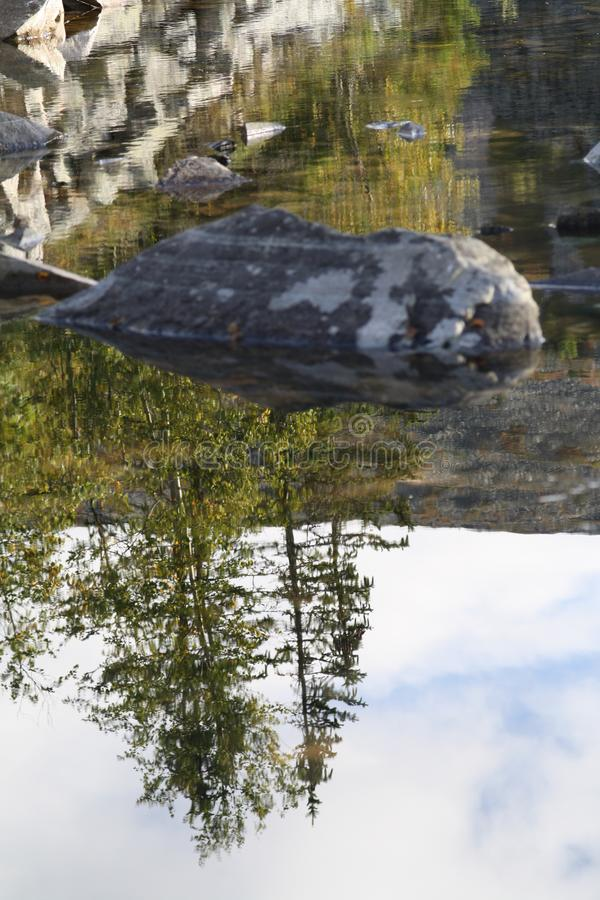 Trees, rocks and their reflection in the stream. royalty free stock photos