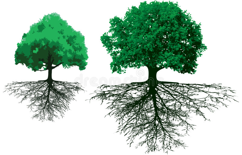 Trees with roots stock illustration