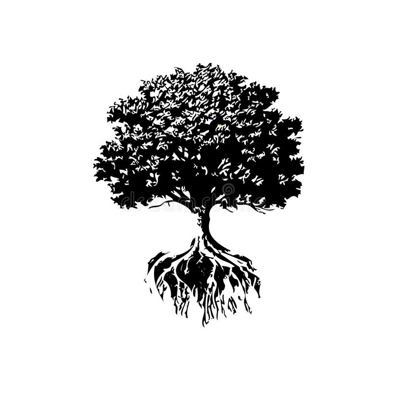 Trees And Roots silhouette. Oak And Olive Trees black and white color vector illustration