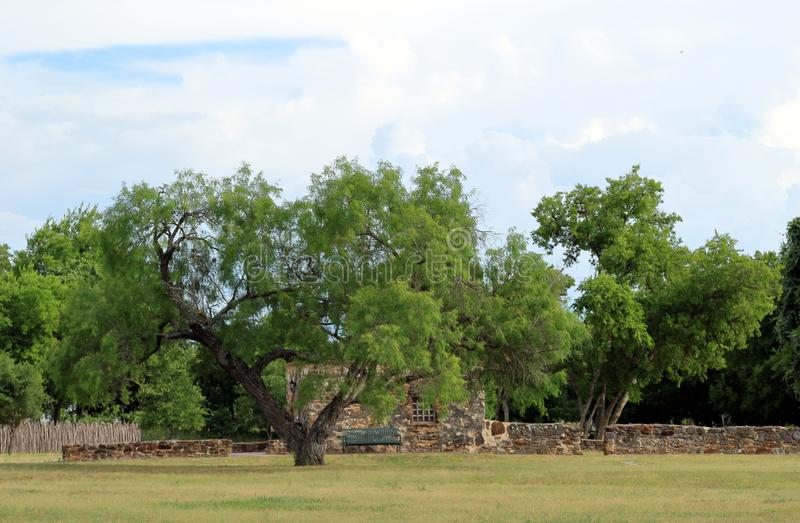 Trees with the ruins on background in San Antonio Missions National Historical Park. Texas royalty free stock photo