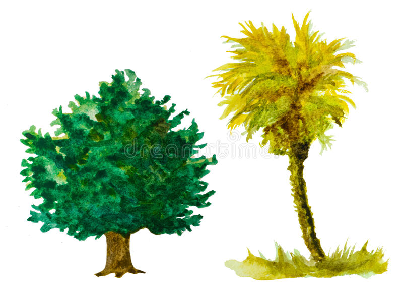 Trees. Set of watercolor trees isolated on white royalty free illustration