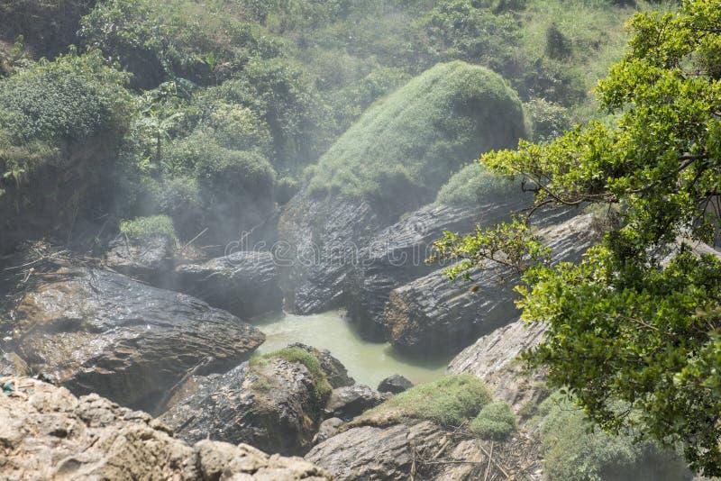 Trees shaped rocks. Dalat, Vietnam royalty free stock photo