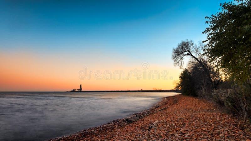 Trees on Shoreline Under Blue Sky stock image