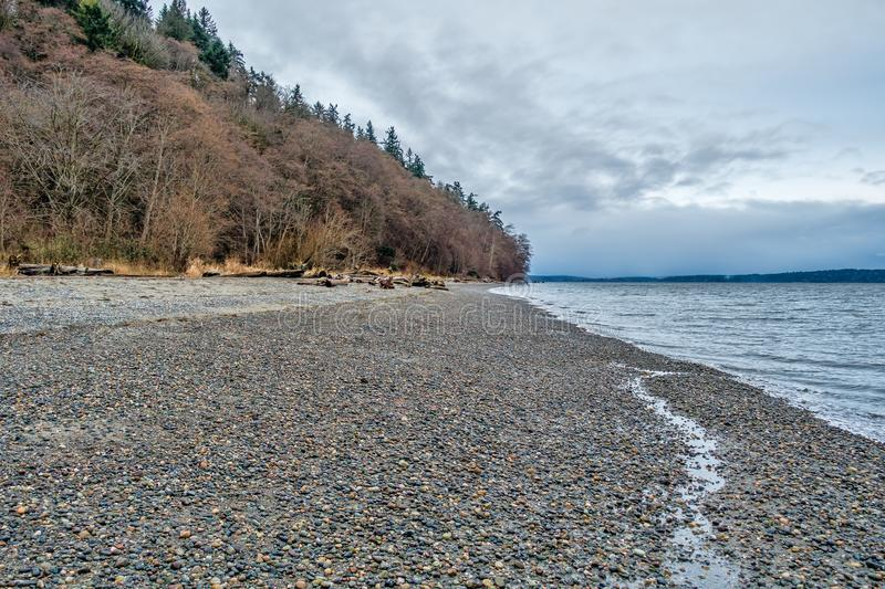 Trees And Shoreline 2. A view of trees and the shoreline at Seahurst Park in Burien, Washingotn stock photo