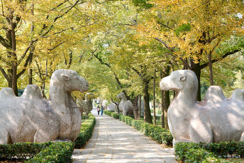 Download Trees On The Sidewalk With Stone Animal Statue Stock Images - Image: 20766794