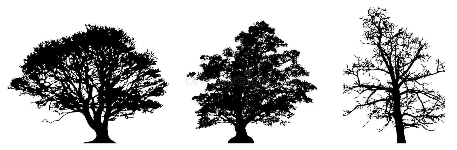 Trees silhouette. Illustration drawing of different types trees silhouette vector illustration