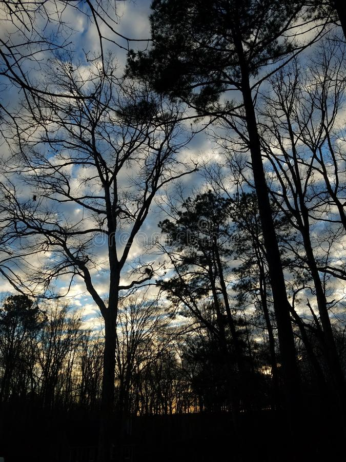 The Trees and Sky. Clouds, nature, dunset, sunset, beautiful royalty free stock photo
