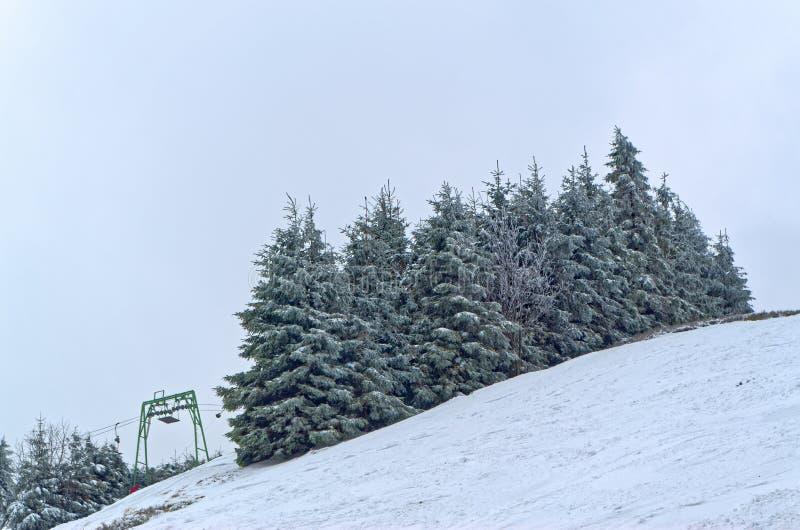 Trees in snow on the ski piste in Harz mountains region, Germany. Trees in snow on the ski piste, Sonnenberg ski piste in Harz national park, Germany stock photography