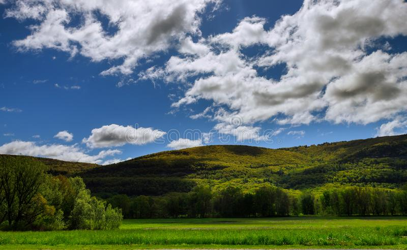 Trees in springtime on the mountain. With blue sky clouds pennsylvania new york poconos mountains landscape united states countryside nature forest scenic royalty free stock photo