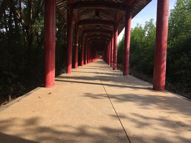 Ancient corridor. The trees sprinkled on the ancient promenade, red wooden posts royalty free stock photo