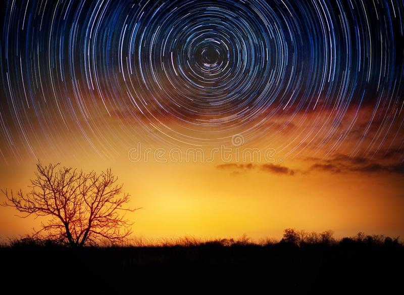 Trees on starry background with bright stars trails. Time lapse, long exposure. Elements of this image furnished by NASA. stock image
