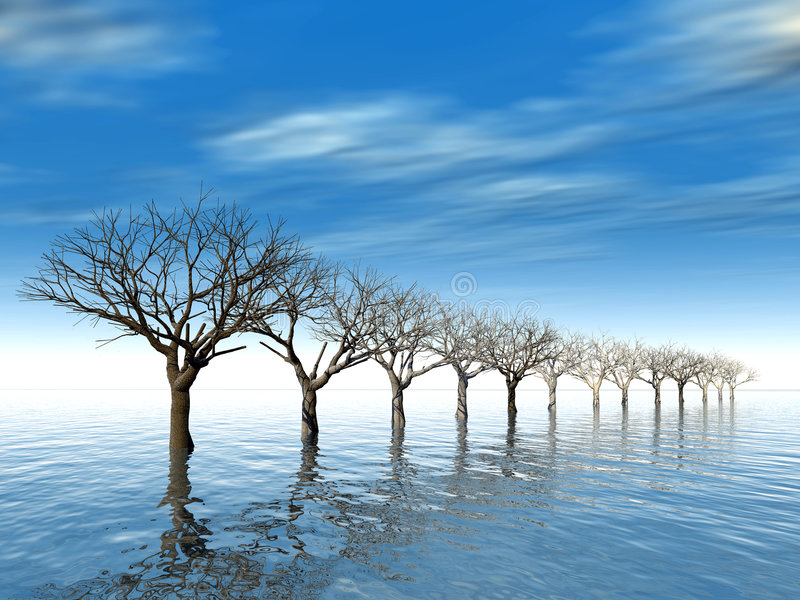 Download Trees In Surroundings Water Stock Photo - Image: 2030910