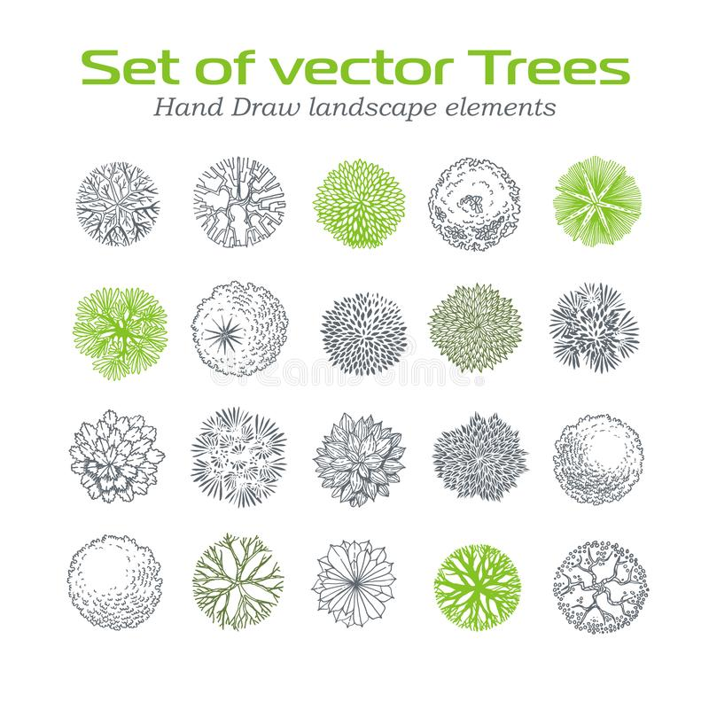 Download Different Plants And Trees Vector Set For Landscape Design Stock