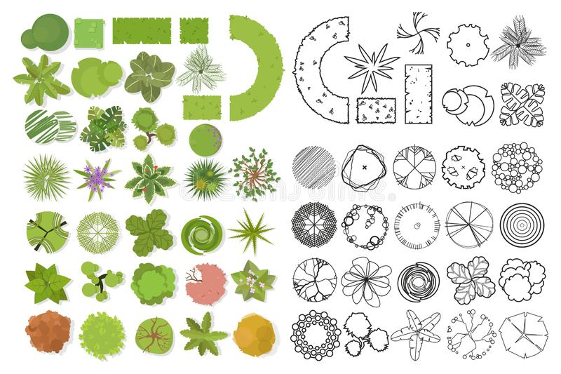 Trees top view. Different trees, plants vector set for architectural or landscape design. Set of linear and color flat  illustrati vector illustration