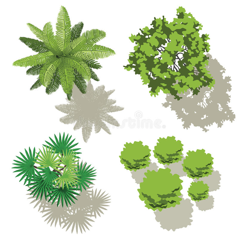 Trees top view for map royalty free stock photography