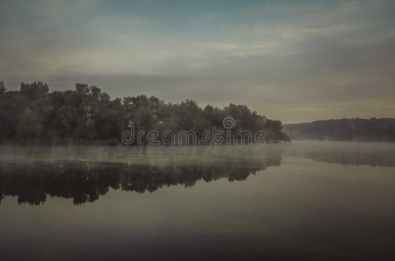 Trees Under Gray Sky Beside Glassy Water Free Public Domain Cc0 Image