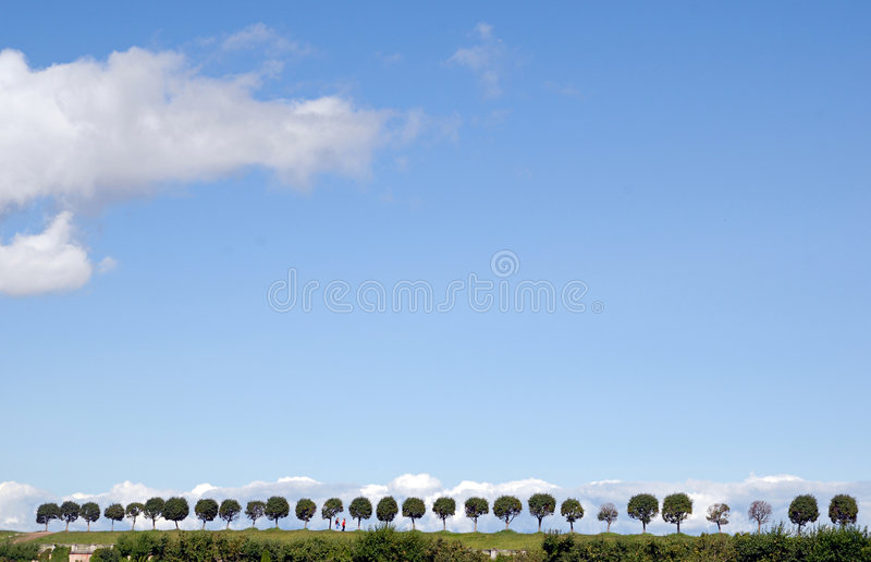 Trees valley in Peterhof with two people. royalty free stock image