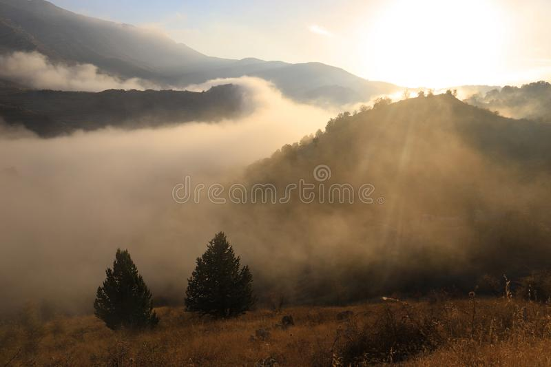Trees, Valleys, and Mountains in the Fog stock image