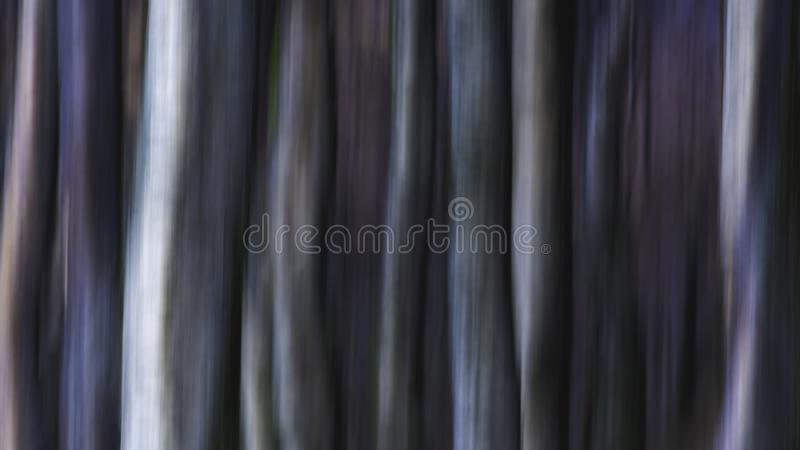 Trees in woodland ICM nature abstract. Trees in woodland.Nature abstract created using intentional camera movement technique.Motion blur.Fine art ICM. Bright and stock photos