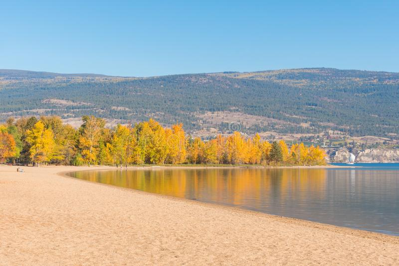 Trees with yellow autumn leaves and sandy beach reflected in calm lake. At Sun Oka Provincial Park near Summerland, BC, Canada stock images