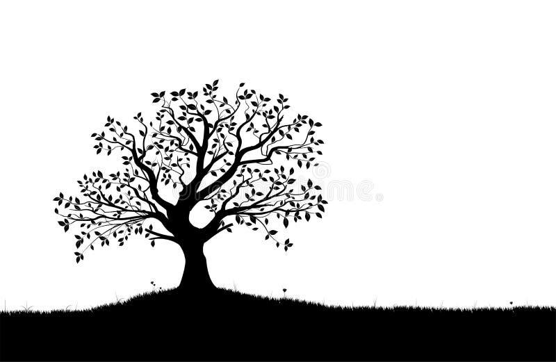 TreeSilhouette, svartvit vektorform royaltyfri illustrationer