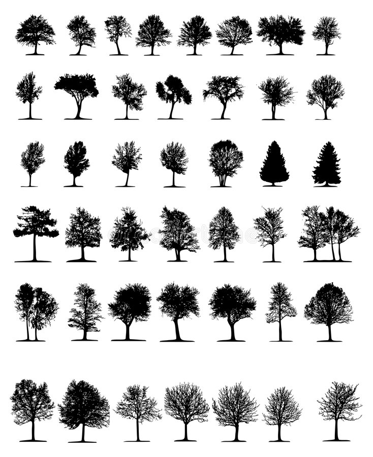 treesvektor stock illustrationer