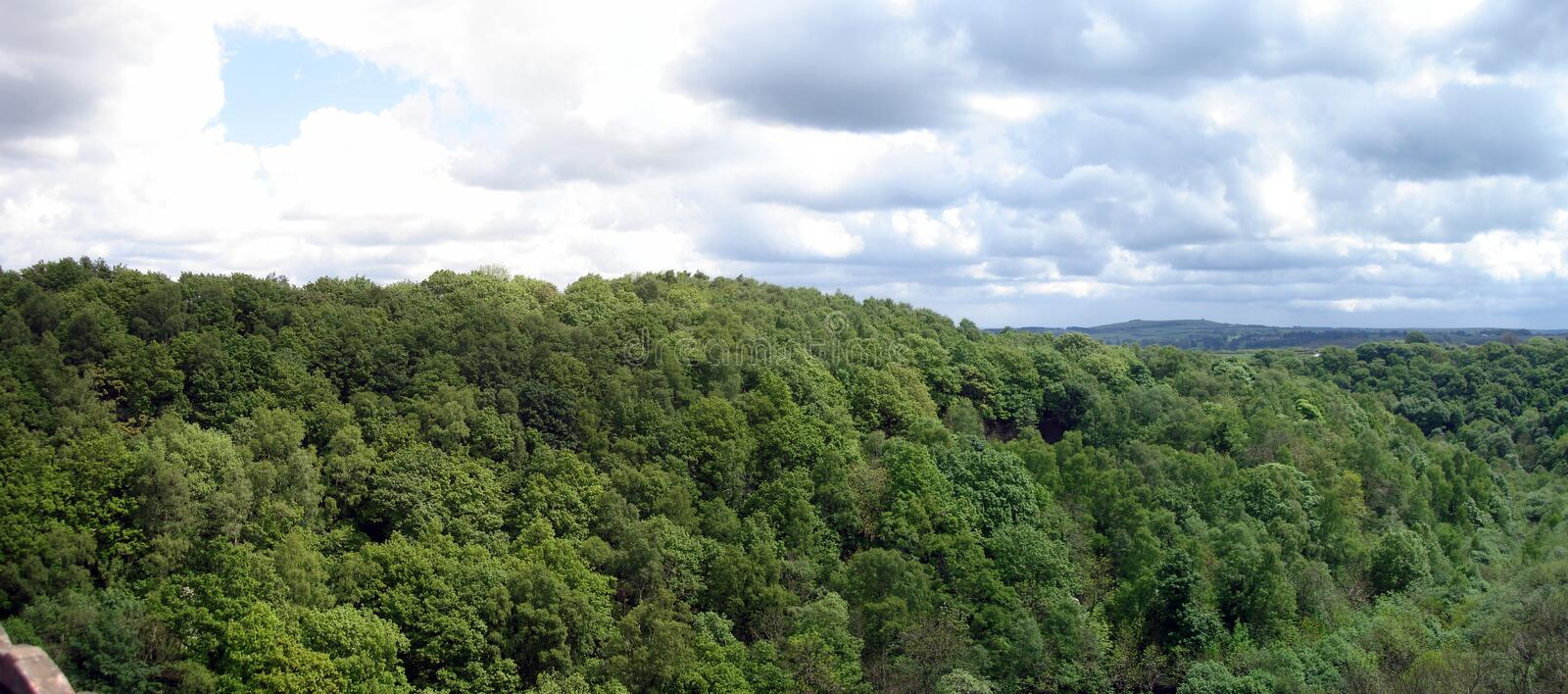 Treetop Landscape. Landscape image of Treetops under a cloudy sky royalty free stock photos