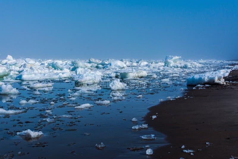 Treibeis im Meer nahe dem sandigen Küste Eis im Meer nahe dem Strand lizenzfreies stockfoto