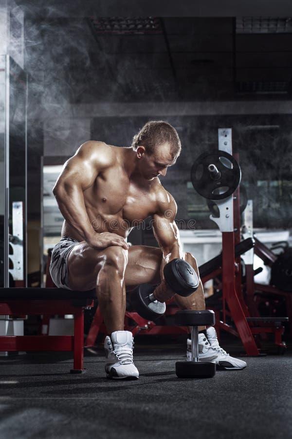 Treiben Sie sehr athletischen Kerl, durchführen Übungspresse mit Dummköpfen an, lizenzfreies stockbild