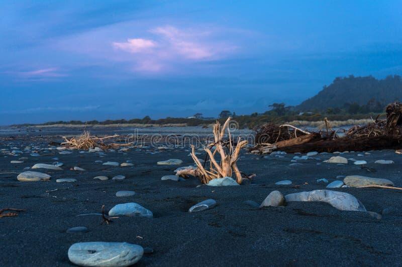 Treibholz auf dem Strand bei Sonnenuntergang stockfotos