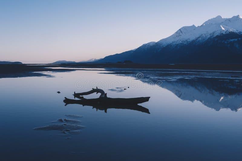 Treibholz auf ruhiger Alaska-Landschaft stockfoto