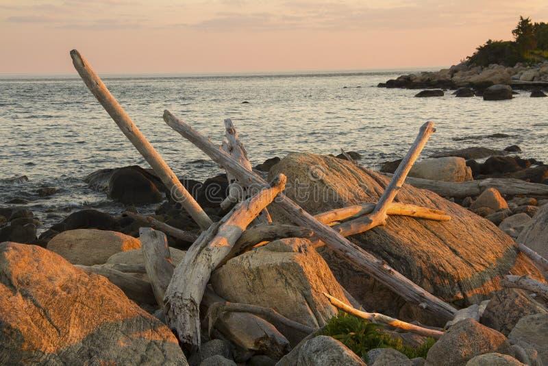 Treibholz gestreut über Glazial- Flusssteinen, Hammonasset-Strand, Madis stockbild
