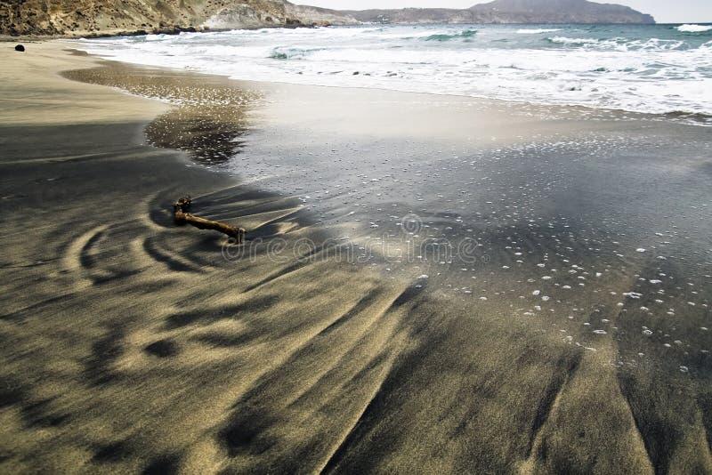 Treibholz im Sand stockfoto