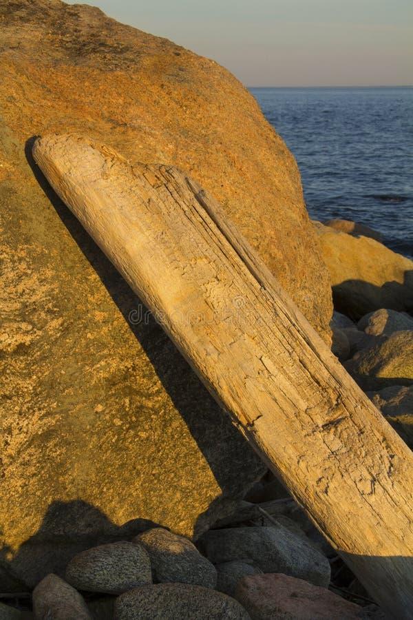 Treibholzklotz, der auf Glazial- Flussstein, Wasser in Hintergrund, C sich lehnt stockfoto