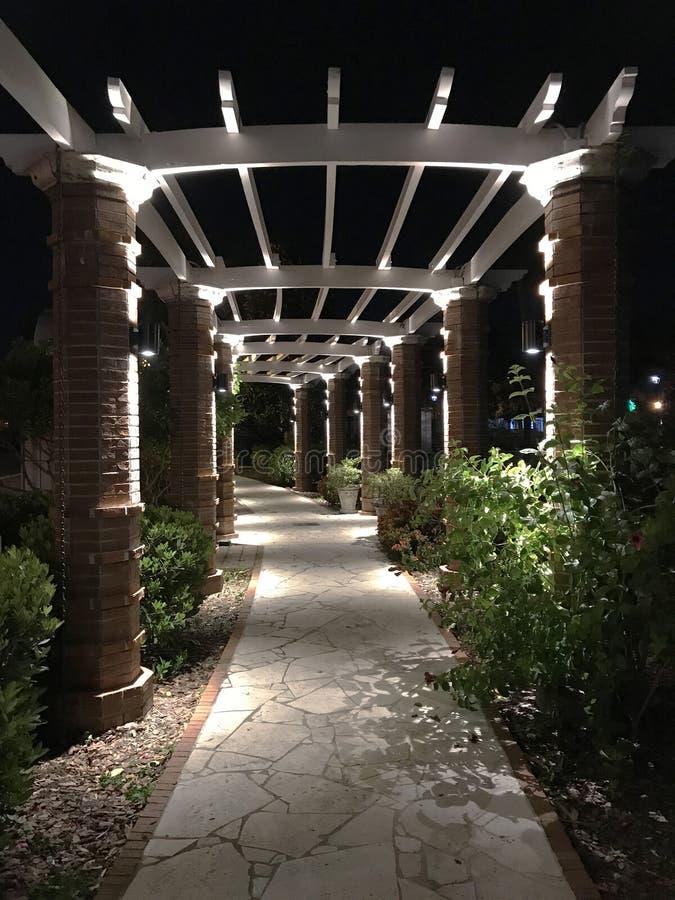 Treillis avec le passage couvert en parc d'hiver, Orlando Image de photo photographie stock