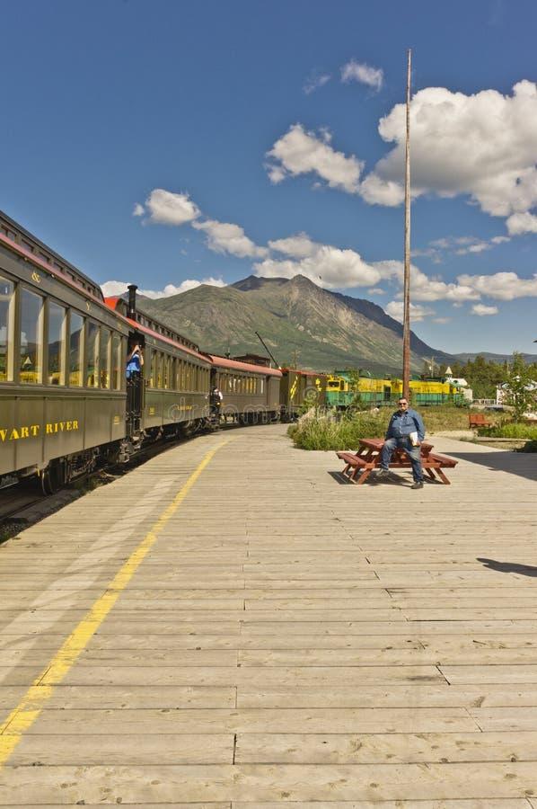 Trein en passagiers stock afbeelding