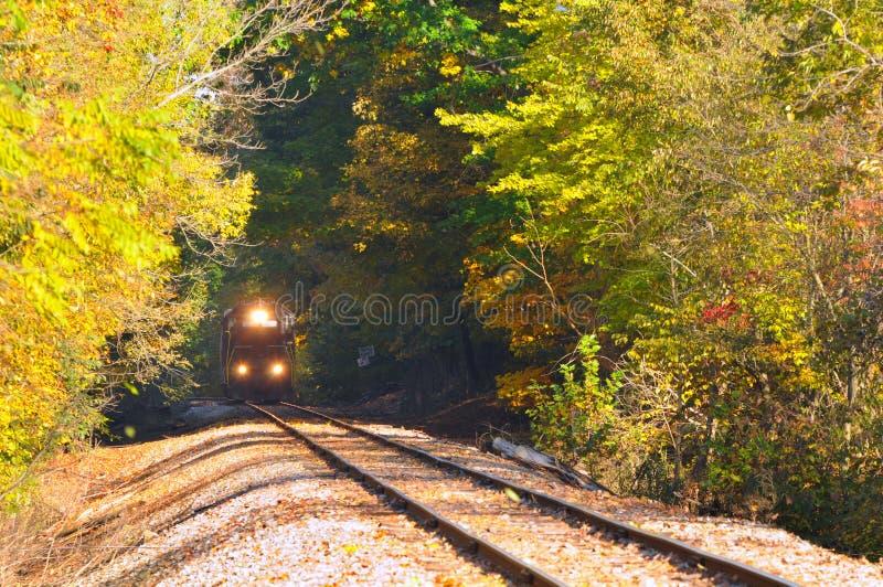 Trein in hout royalty-vrije stock foto's