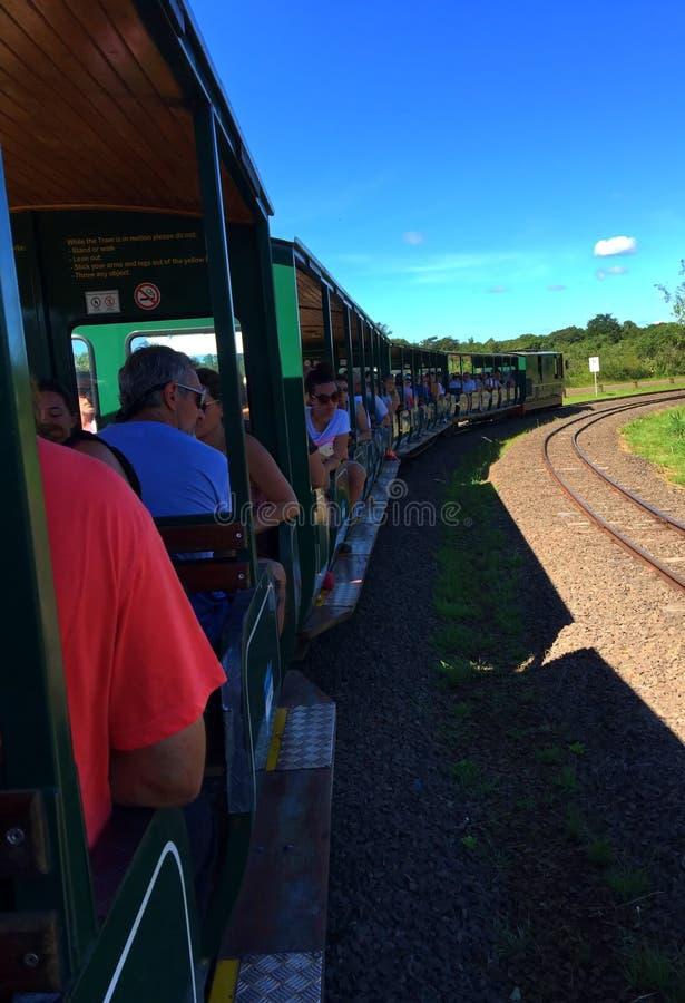 Trein met toerist in Iguazu-Dalingen, Argentinië - één van de Wereld is benieuwd stock foto's