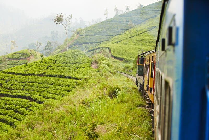 Trein in Sri Lanka royalty-vrije stock afbeelding