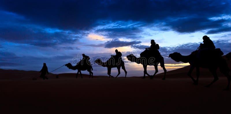Trein van de kameel silhouetteerde de kleurrijke woestijn van de hemelSahara royalty-vrije stock foto