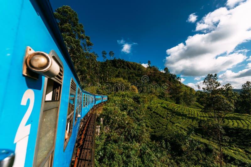 Trein van Nuwara Eliya aan Kandy onder theeaanplantingen in de hooglanden van Sri Lanka stock foto