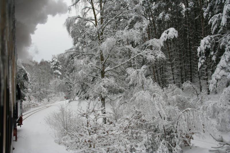 Trein in winterlandscape royalty-vrije stock foto's