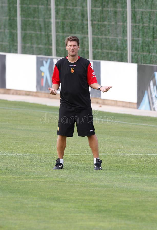 Treinador do futebol de Denmarks Michael Laudrup que gesticula o vertical fotografia de stock
